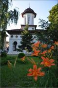 Biserici / Manastiri BISERICA SFANTUL STEFAN - Calarasi