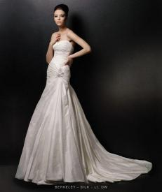 Bride Dress Wedding Dress Images Pictures With Wedding Dress 3