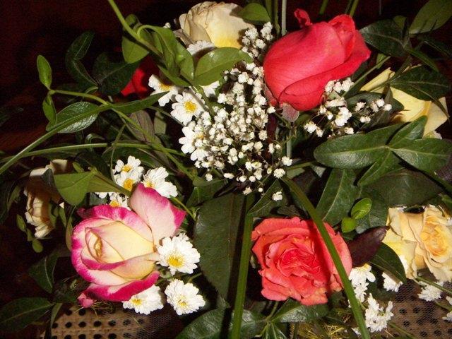 43. Gönülçelen -Inima furata - Heart Stealer - General Discussions - Comentarii - Pagina 21 Trandafiri