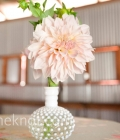 aranjamente-florale-nunta-aranjamente-de-masa-nunta-10