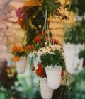 aranjamente-florale-nunta-aranjamente-agatatoare-suspendate-jpg-17