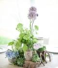flori-nunta-primavara-aranjamente-florale-2_0