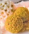 aranjamente-florale-de-masa_nunta_pomandere-21