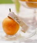 carduri-masa-invitati-nunta-24