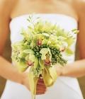 combinatii-culori-nunta_verde-lamaie-oliv-111