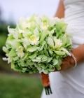 combinatii-culori-nunta_verde-lamaie-oliv-114