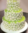 combinatii-culori-nunta_verde-lamaie-oliv-119