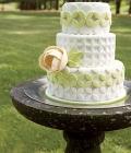 combinatii-culori-nunta_verde-lamaie-oliv-25