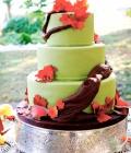 combinatii-culori-nunta_verde-lamaie-oliv-29