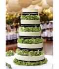 combinatii-culori-nunta_verde-lamaie-oliv-3-0
