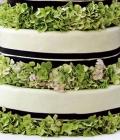 combinatii-culori-nunta_verde-lamaie-oliv-3-1