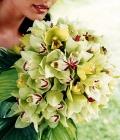 combinatii-culori-nunta_verde-lamaie-oliv-45