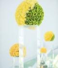 combinatii-culori-nunta_verde-lamaie-oliv-54