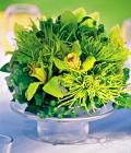 combinatii-culori-nunta_verde-lamaie-oliv-68