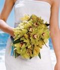 combinatii-culori-nunta_verde-lamaie-oliv-7