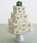 combinatii-culori-nunta_verde-lamaie-oliv-70