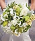 combinatii-culori-nunta_verde-lamaie-oliv-91