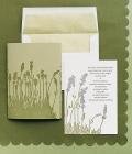 combinatii-culori-nunta_verde-lamaie-oliv-96