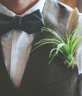 combinatii-culori-nunta_verde-113