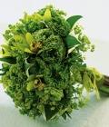 combinatii-culori-nunta_verde-116