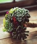 combinatii-culori-nunta_verde-157