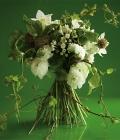 combinatii-culori-nunta_verde-44