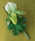 combinatii-culori-nunta_verde-60