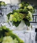 combinatii-culori-nunta_verde-65