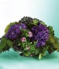 combinatii-culori-nunta_verde-70
