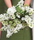 combinatii-culori-nunta_verde-72