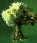 combinatii-culori-nunta_verde-88