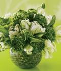 combinatii-culori-nunta_verde-91