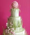combinatii-culori-nunta_vernil-menta-fistic-verde-deschis-10