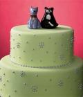 combinatii-culori-nunta_vernil-menta-fistic-verde-deschis-26