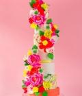 culori-neon-tort-de-nunta-desert-8