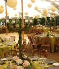 decoratiuni-nunti-lampioane-ghirlande-luminoase-lumini-15
