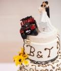 Diverse alte decoratiuni pentru tortul de nunta (I)