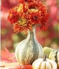 aranjamente-florale-pentru-nunti-de-toamna_dovleac-10