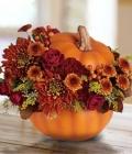 aranjamente-florale-pentru-nunti-de-toamna_dovleac-16