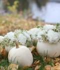aranjamente-florale-pentru-nunti-de-toamna_dovleac-17