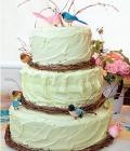 poze-figurine-tort-nunta-haioase_animale-10