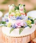 poze-figurine-tort-nunta-haioase_animale-4