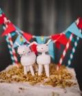 poze-figurine-tort-nunta-haioase_animale-5