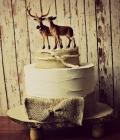 modele-decoratiuni-tort_animale-1