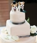 modele-decoratiuni-tort_animale-37
