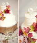 modele-decoratiuni-tort_animale-4