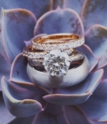imagini-nunta-9