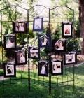 decoratiuni-fotografii-nunta-4