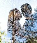 fotografie-fotografii-de-nunta-1
