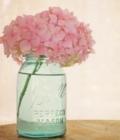 Mason jars: aranjamente florale diverse